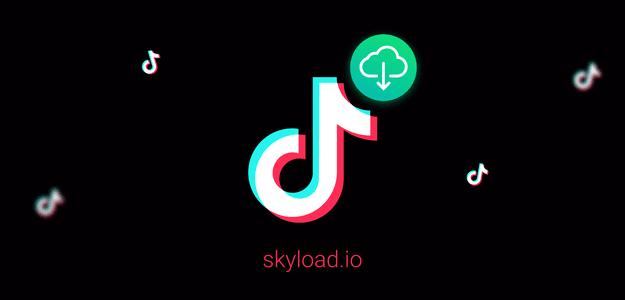Скачать видео Tik Tok с помощью расширения Skyload / Как скачать видео с Tik Tok