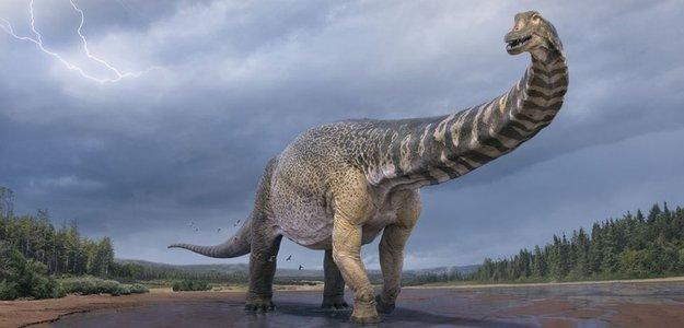 New Dinosaur Species Discovered In Australia.