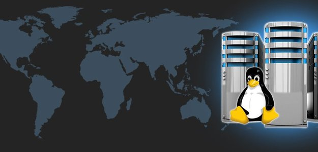 Is Linux Reseller Hosting the Perfectly Choice for Making Profits?