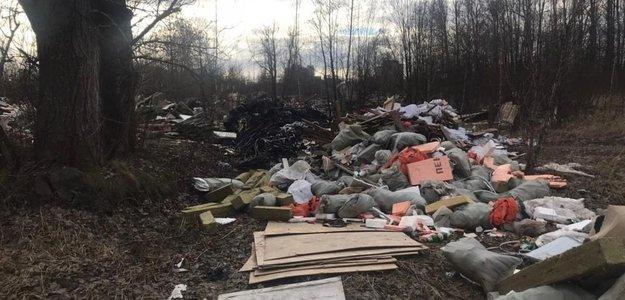 Команда Гульчука ковыряет собачий кал, вместо уборки свалок, за 150 млн рублей