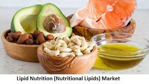 Lipid Nutrition (Nutritional Lipids) Market | Industry Forecast Till 2025 —  Mahendra D на Hashtap